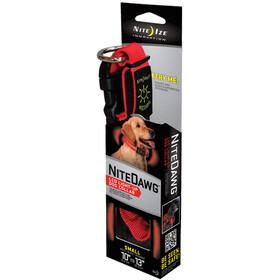 Nite Ize NiteDawg LED-Collar, rood/zwart